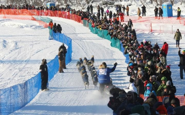 Race veteran Linwood Fiedler waves to the fans while dropping onto the Chena River during the restart of the Iditarod Sled Dog Race.