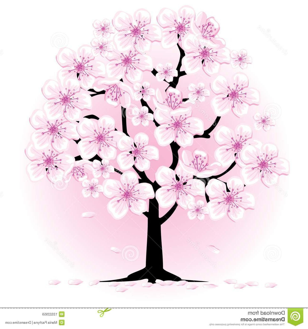 The Best Free Cherry Blossom Drawing Images Download From 50 Free