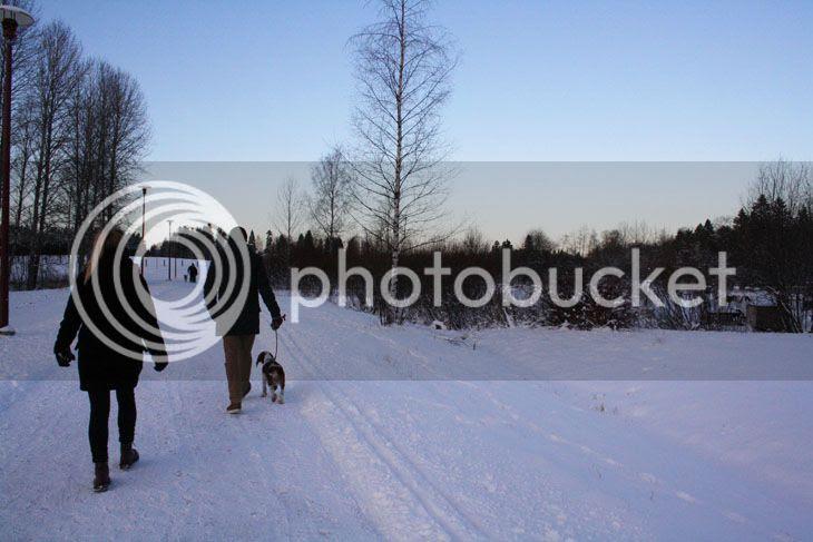 photo kuva3-7.jpg