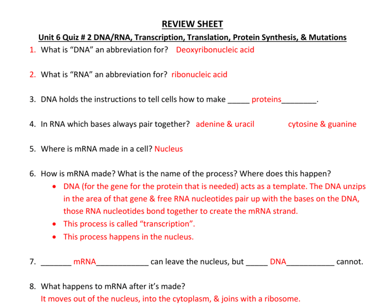 Worksheet On Dna Rna And Protein Synthesis Answer Key Pdf ...