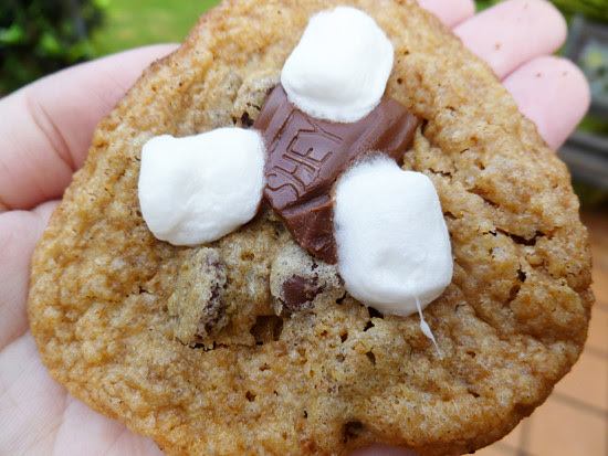09 Sept 27 - Smores cookies (2)