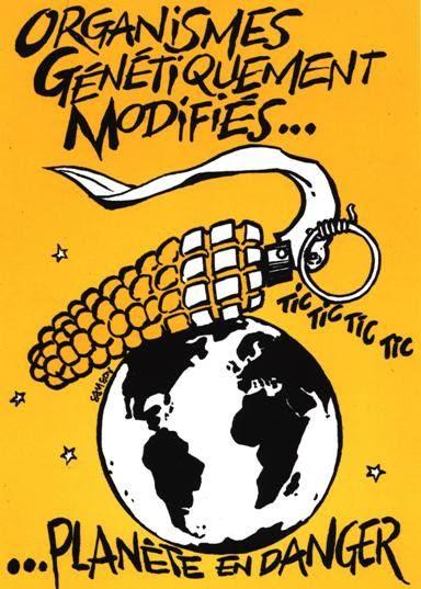 http://a54.idata.over-blog.com/0/48/92/28/OGM/Ogm-20Attention-20Danger.jpg