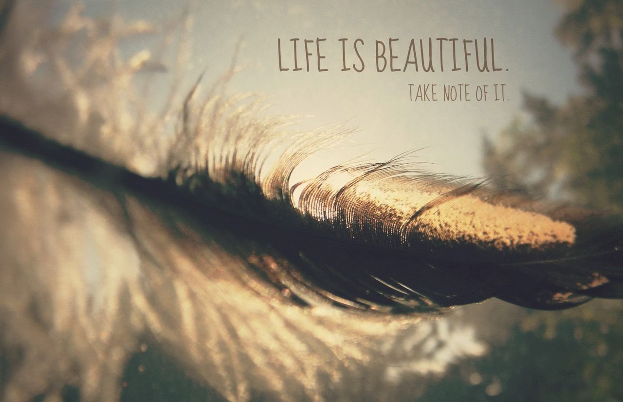 Life Is Beautiful Take Note Of It Pictures Photos And Images For