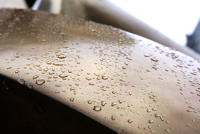 dreamer in the rain