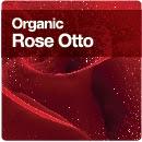 Organic Rose Otto