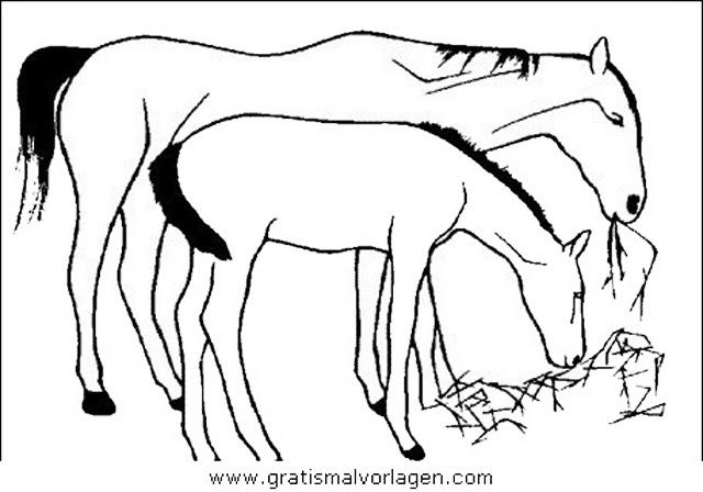 ausmalbilder kostenlos pferde mit fohlen und haus