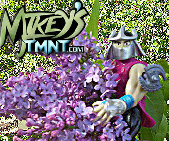 Mikey's TMNT .. Mother's Day 2008 ♥ ♥
