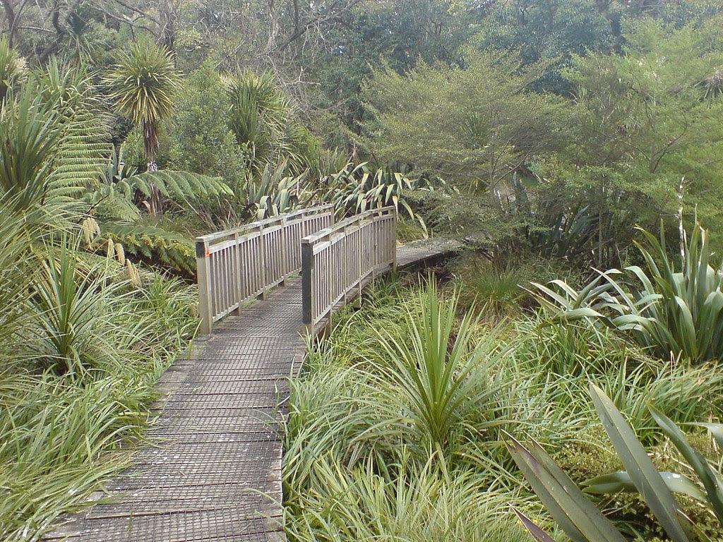 http://upload.wikimedia.org/wikipedia/commons/thumb/f/f4/Walking_Path_Along_Oakley_Creek_II.jpg/1024px-Walking_Path_Along_Oakley_Creek_II.jpg