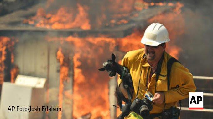 Resultado de imagen para Un incendio en California obliga a desalojar a 4.000 personas