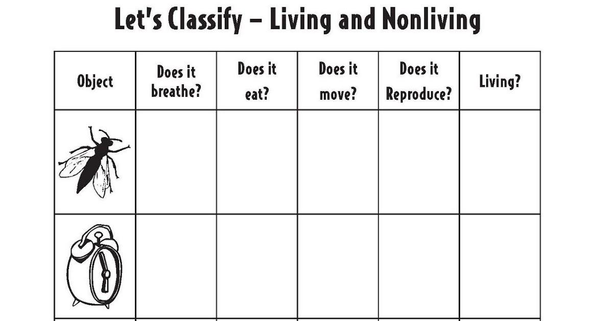 Characteristics Of Life Worksheet Pdf - worksheet