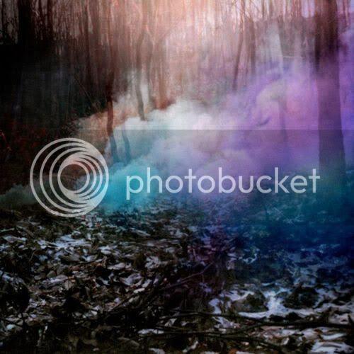 smoke,forrest,blue,purple