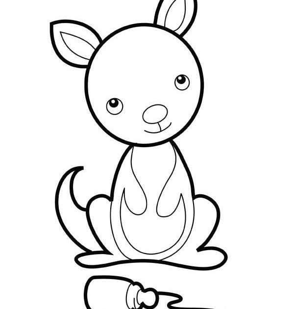 Baby Kangaroo Coloring Page NetArt