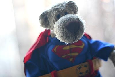 Superhugo_ist_da_3