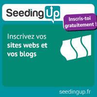 Comment générer des revenus avec un blog ?