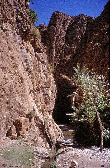 Pilier_du_Couchant - Todra Marroquí