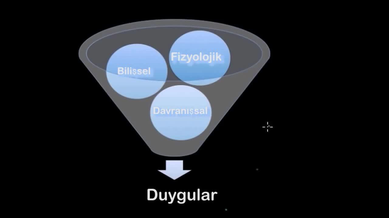 Duygunun üç Bileşeni Ve Evrensel Duygular Izle Video Eğitim