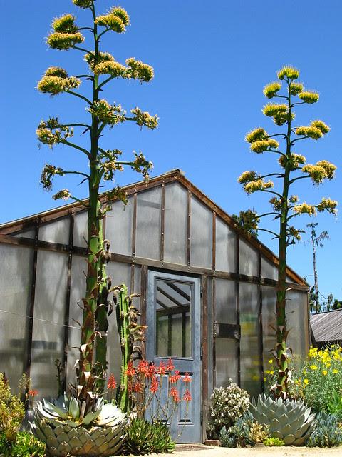 Gamble Garden. Palo Alto, CA