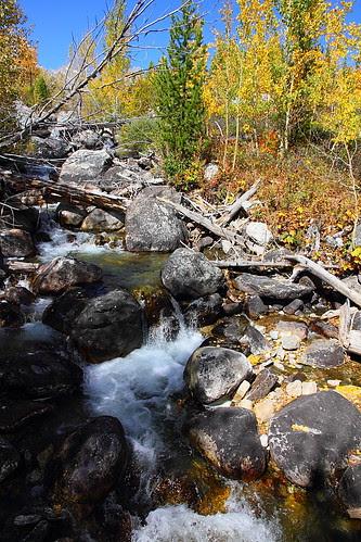 IMG_8080 Taggart Lake Trail, Grand Teton National Park
