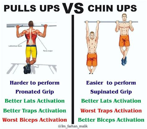 pull ups  chin ups include    workouts