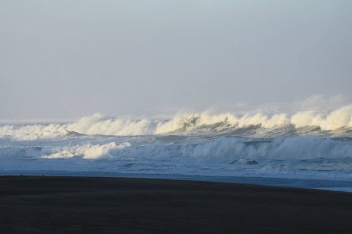 Oregon Coast 18