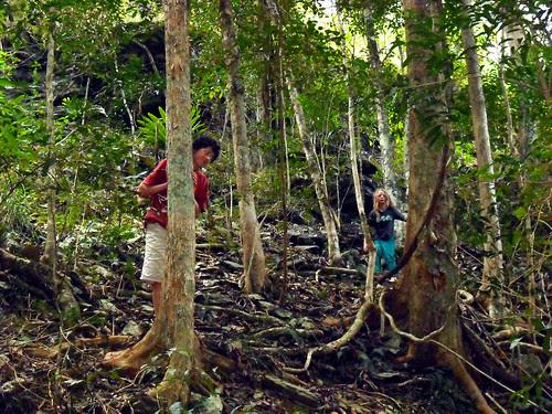 rainforest hippy boys by you.