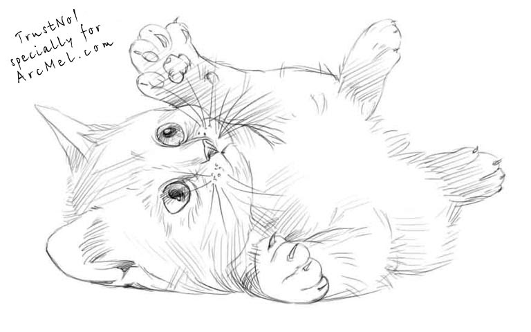 Cute Kitten Drawing at GetDrawings   Free download