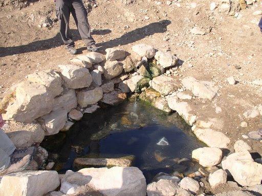 Kh. al-Malih-خربة المالح: خربة المالح الينابيع 2