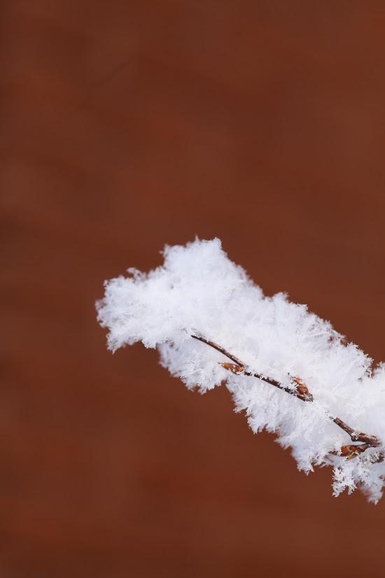 sneeuwlandschap-3