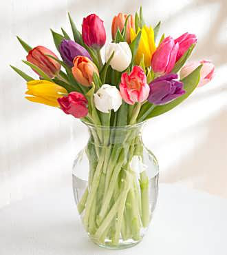 New Products Flowerstoallcom Flowers To All Inc