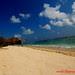 pantai OA, Flores timur