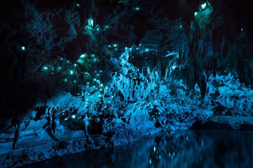 fotografia-cueva-gusanos-brillantes-nueva-zelanda-joseph-michael (6)