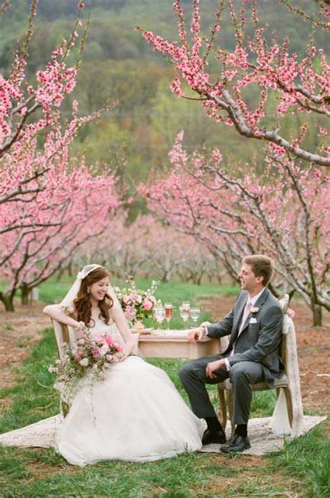 The Beauty of a Cherry Blossom Wedding Theme   Wedding