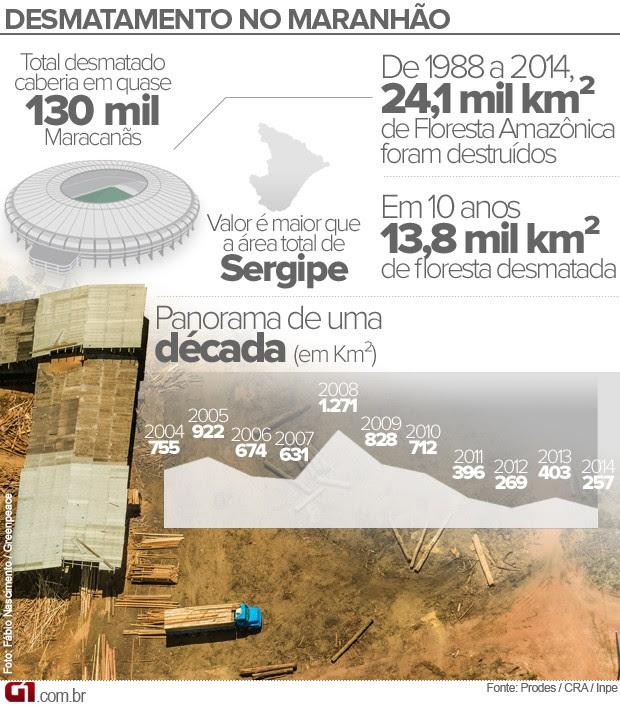 Dados sobre o desmatamento no Maranhão (Foto: G1)