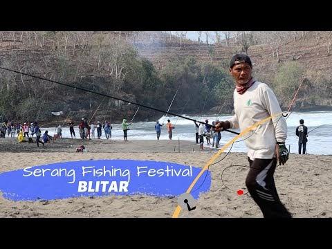 Ada 500 Pemancing di Serang Fishing Festival Pantai Serang Blitar