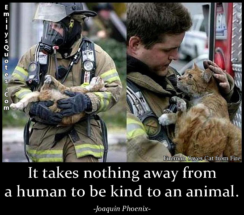 It Takes Nothing Away From A Human To Be Kind To An Animal Popular