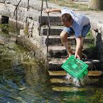 Villecomte | Villecomte : la course d'escargots a tenu ses promesses