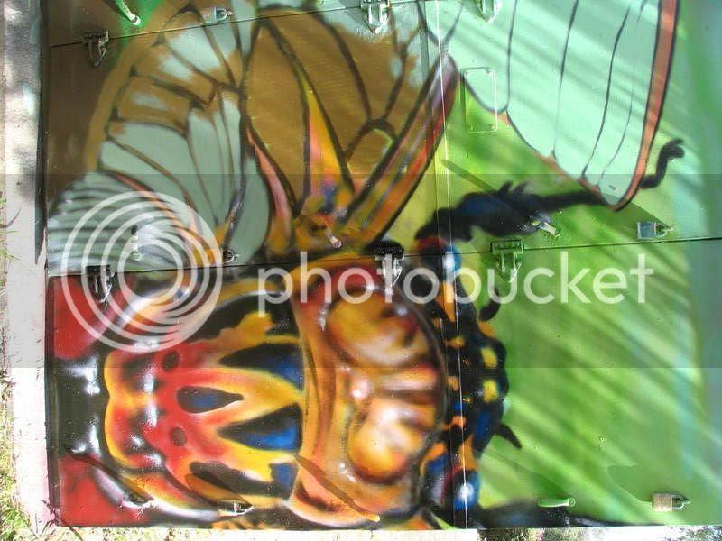 cicada box no.2 blue