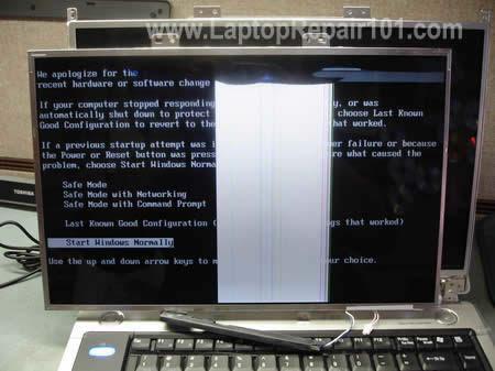 Uji komputer riba dengan skrin LCD yang lain