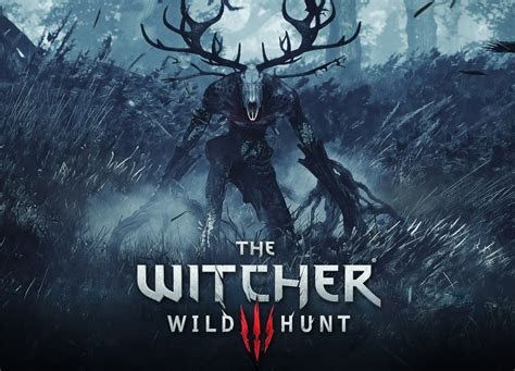 witcher  wild hunt  learn