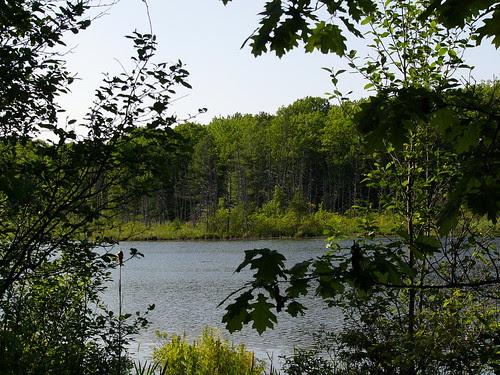 Loda Lake