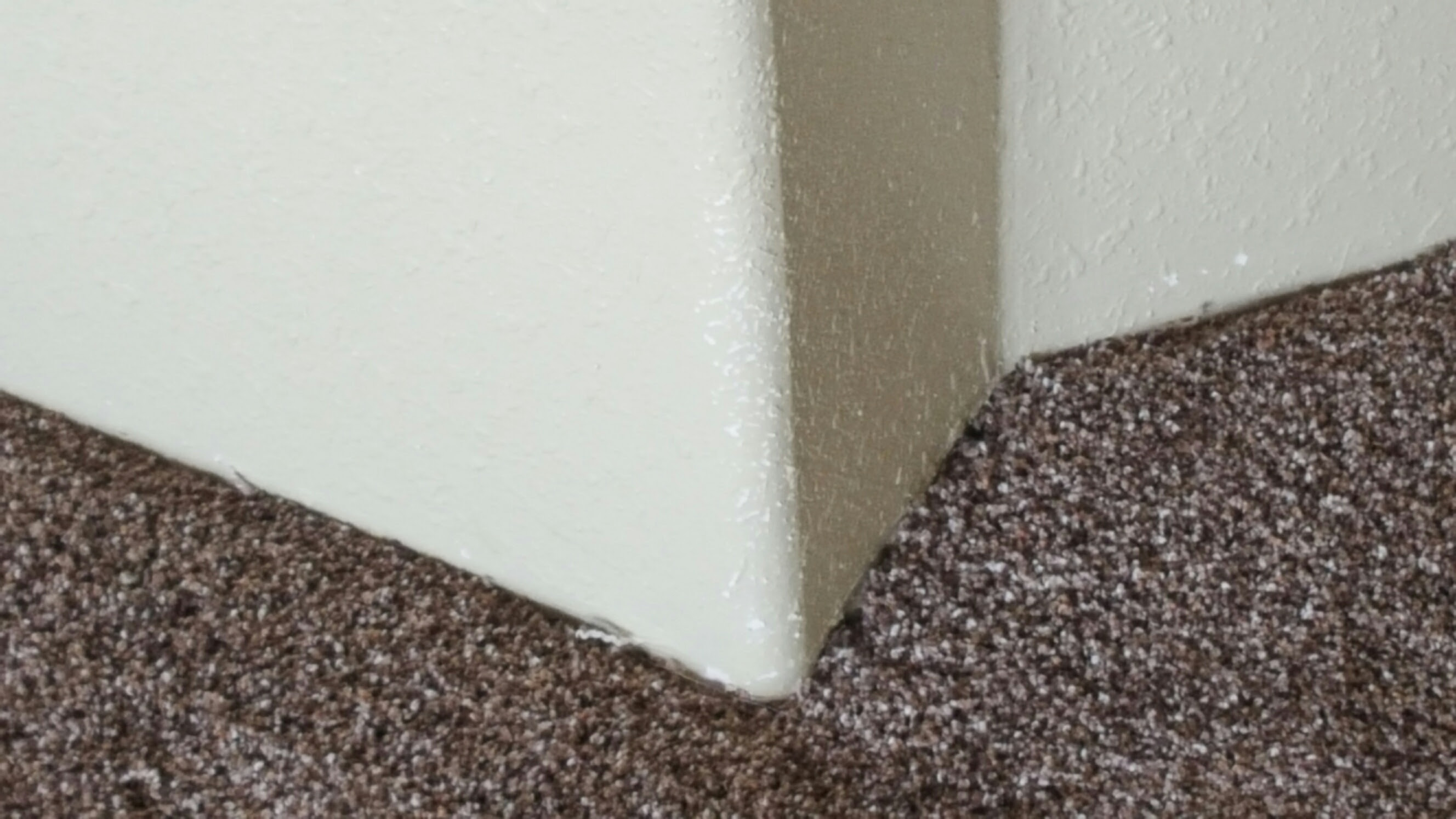 Home depot carpet specials