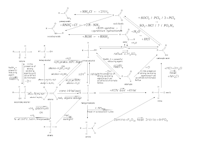 The molecules included in this web include amine, primary and secondary amides, primary, secondary and tertiary alcohols, ester, acyl chloride, carboxylic acid, aldehyde, ketone, alkane, alkene, nitrile and halogenoalkane.