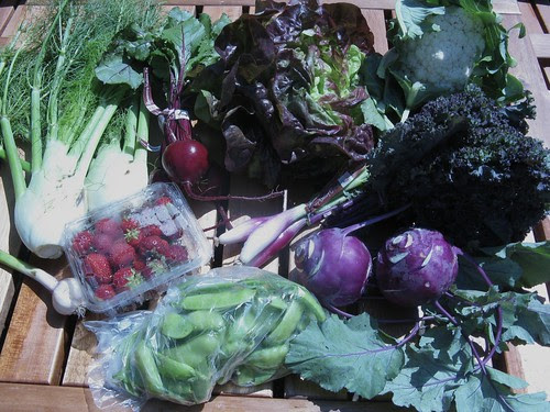 What's in CSA box #5