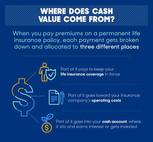 What Is Cash Value Life Insurance?… - Webs Most Popular