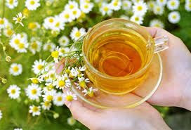 The Benefits of Chamomile Tea   Natural Alternative Remedy