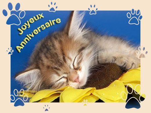Bon Anniversaire Le Blog De Paradisianne