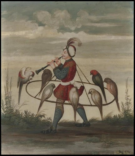 falconer with birds