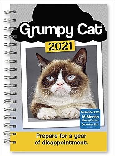 Grumpy Cat Calendar 2022.Grumpy Cat 2021 Calendar Academic Calendar