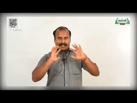11th Chemistry தனிமங்களின் ஆவர்த்தன வகைப்பாடு அலகு 3 பாடம் 3 பகுதி 1 Kalvi TV