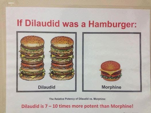 If Dilaudid was a burger morphine comparison photo Ifdilaudidwasaburgerpicture_zps1408a5bd.jpg